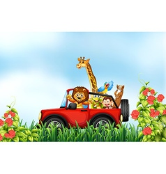 Animals and car vector image