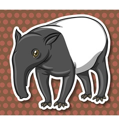 Anteater vector