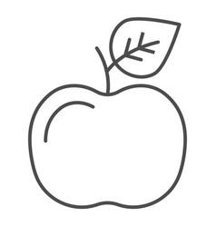 apple thin line icon fruit vector image
