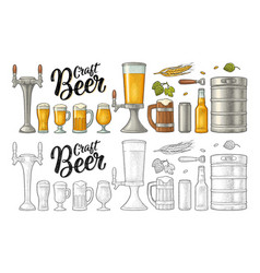 Beer set with wood mug tap glass hop bottle vector