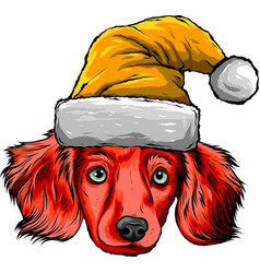 dog face with christmas hat vector image