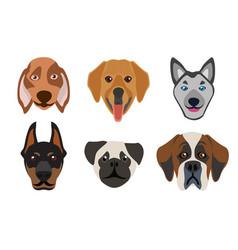 Flat style dog head icons cartoon dogs faces set vector