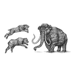 mammoth or extinct elephant cave bear and saber vector image