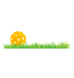 Pickleball with green grass vector