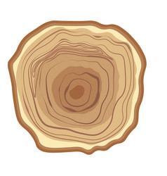 Tree wood year ring isolated icon vector