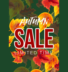 bright poster with autumnal sale advertisement vector image