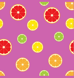 Citrus fruits slice pattern seamless color vector