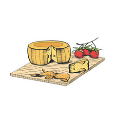 Drawing of cheese head piece slices and cherry vector