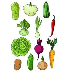 Fresh isolated organic farm vegetables vector