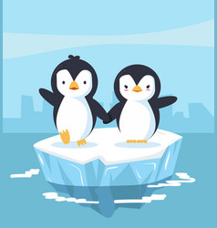 Penguins couple with blue ice floe vector