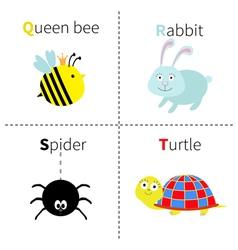 Letter Q R S T Queen bee Rabbit Spider Turtle Zoo vector image vector image