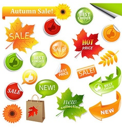 Autumn Collection Sale Elements vector image vector image