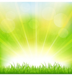 Green Background With Green Grass And Sunburst vector image vector image