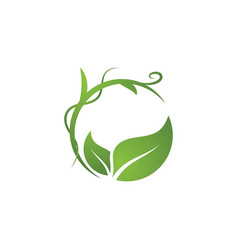 bio leaf icon design vector image