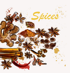 Creative background with anis stars pepper vector