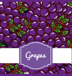 Delicious grapes fresh fruit label pattern vector