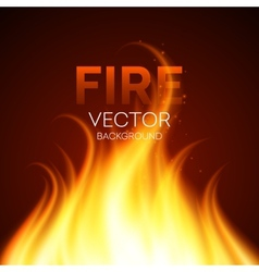 Fire realistic background vector image