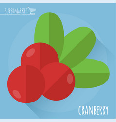 Fresh ripe cranberry vector