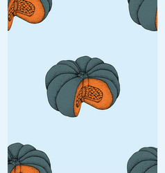 pumpkin pattern pumpkin organic food vector image