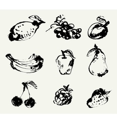 Set fruits freehand drawing vector