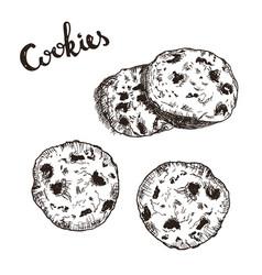 sketch of cookies vector image