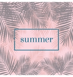 Summer poster palm leaves background modern vector