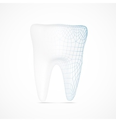 Tooth wireframe vector