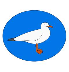 white gull on white background vector image