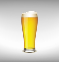 Glass of light beer vector image vector image