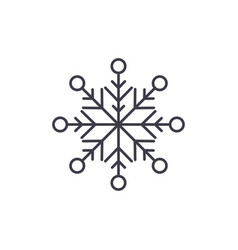 beautiful snowflake line icon concept beautiful vector image