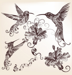 Collection hand drawn hummingbirds for design vector