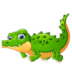 crocodile cartoon isolated on white background vector image