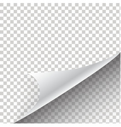 Curled corner of paper with shadow vector image