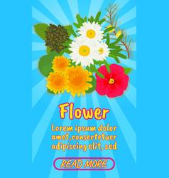Flower concept banner comics isometric style vector