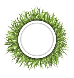 Grass frame green for your design vector image