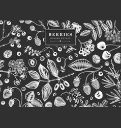 Hand drawn berries background on chalkboard wild vector