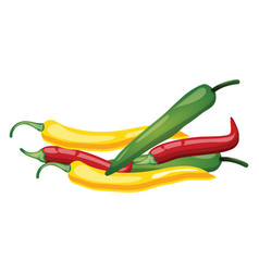 red green and yellow chilli cartoon fruit on vector image