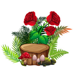 red roses and ferns on white background vector image