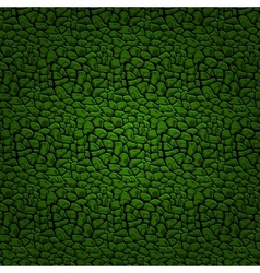 seamless eather texture background vector image