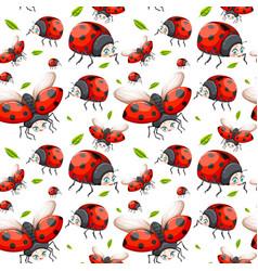 seamless pattern of ladybug vector image