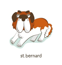 St Bernard Dog character isolated on white vector image
