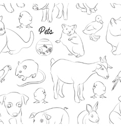 Animals pets pattern vector image