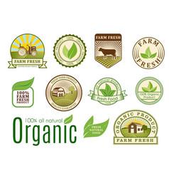 organic vegan logo labels healthy food eco vector image