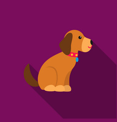 sitting dog icon in flat style for web vector image