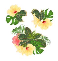 bouquet with tropical flowers set vector image