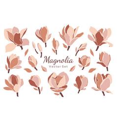 set magnolia flowers buds leaves vector image