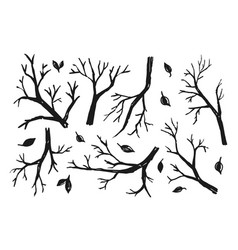 black trees branches vector image