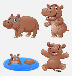 cartoon funny hippos collection set vector image