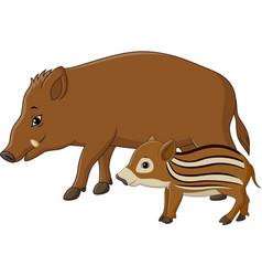 Cartoon wild boar and piglet vector