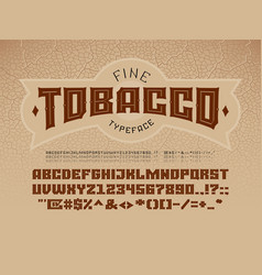Decorative vintage font on the background of the vector